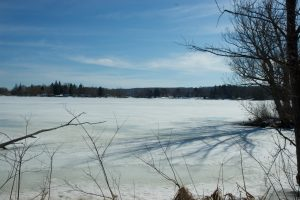 Frozen lakes of Lily Dale